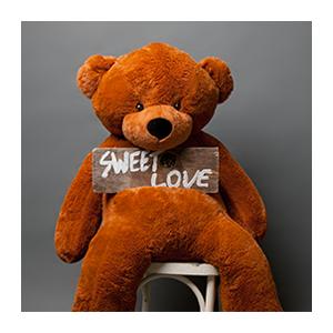 Плюшевый медведь Миха (шоколадный)